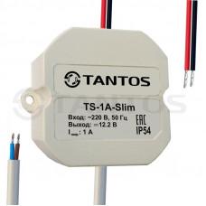 TS-1,5A-Slim